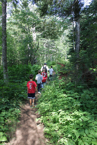 On the trail to the Ojibway Lookout Tower